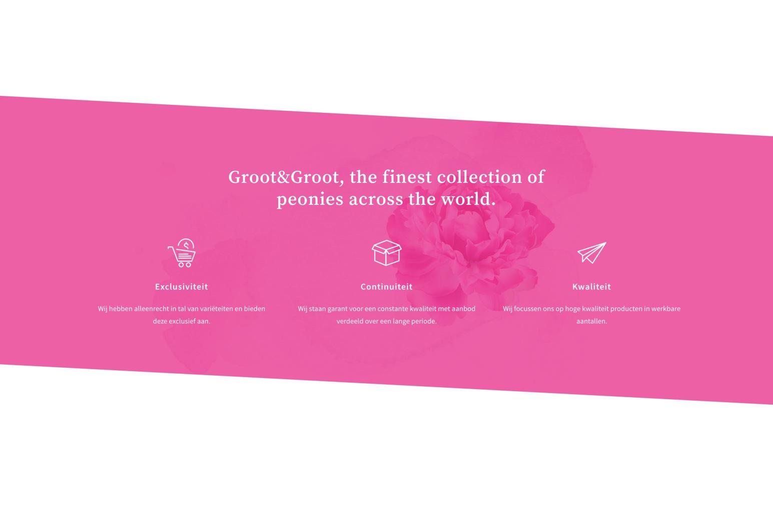 Groot & Groot Copy 2